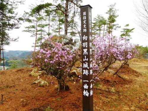 向羽黒山城(福島県)