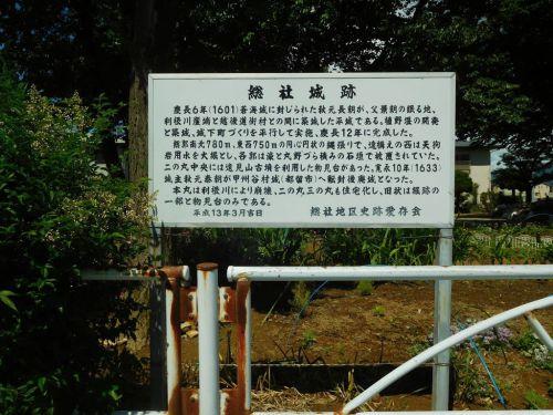 総社城(群馬県)