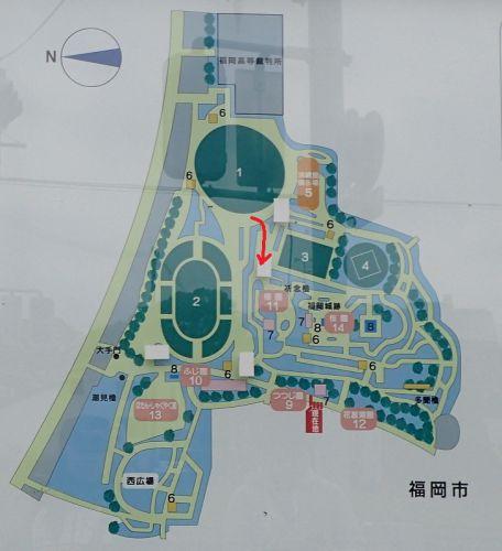 2019.04.28 福岡城 [7] - 東御門跡から二の丸 -