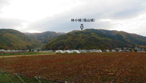 信濃松本 林小城  小城とは名ばかり発達していく小笠原城郭の姿
